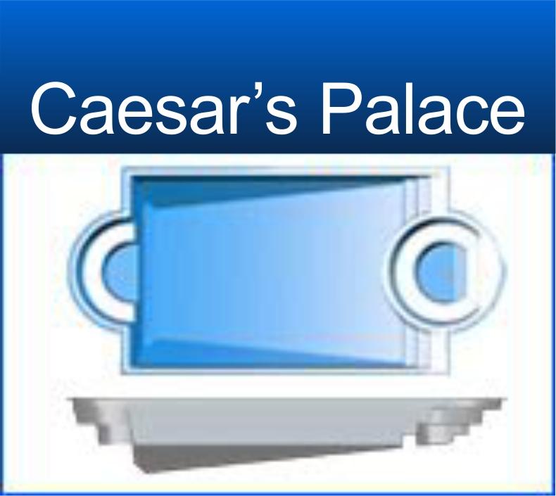 Caesars Palace $48,295