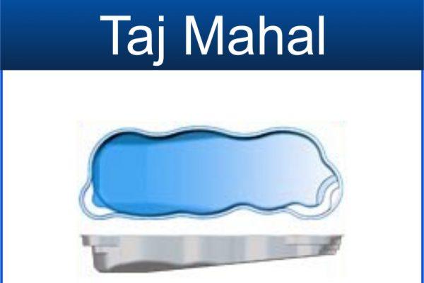 Taj Mahal $48,695